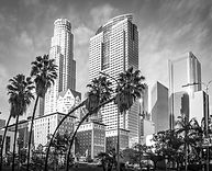 City of La 2 .jpg