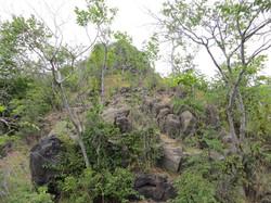Природа севера Армении