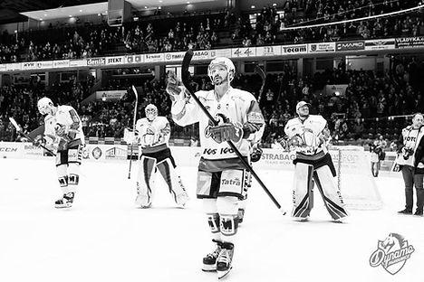 Nick Schaus, Professional Hockey Player