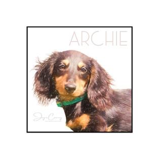 Archie Portrait