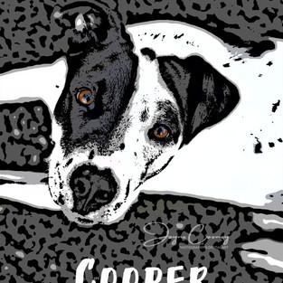 Cooper Pop Art