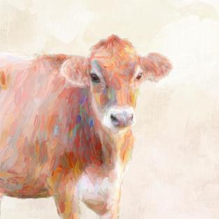 Farm & Animals