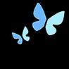 small business wix website designer in Florida
