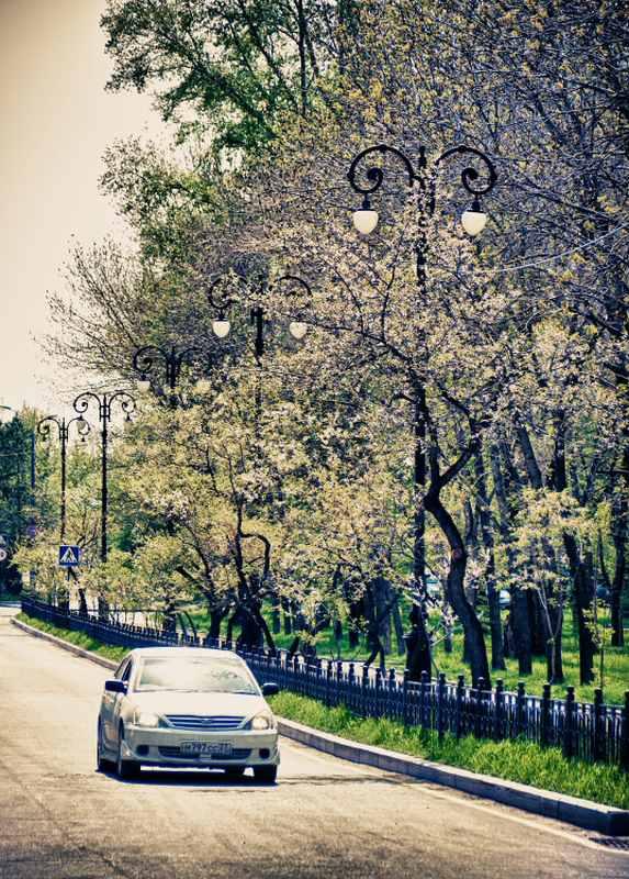 Хабаровск (41)