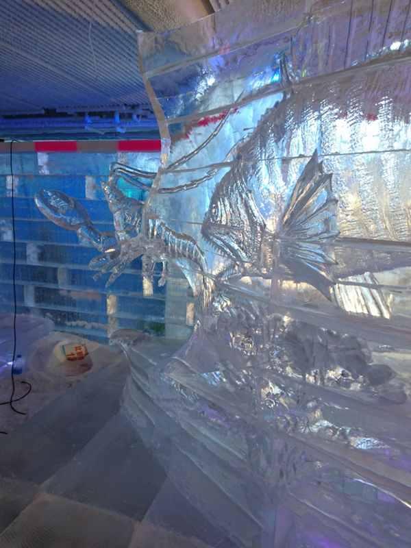 Ледовый конкурс в Китае (20)