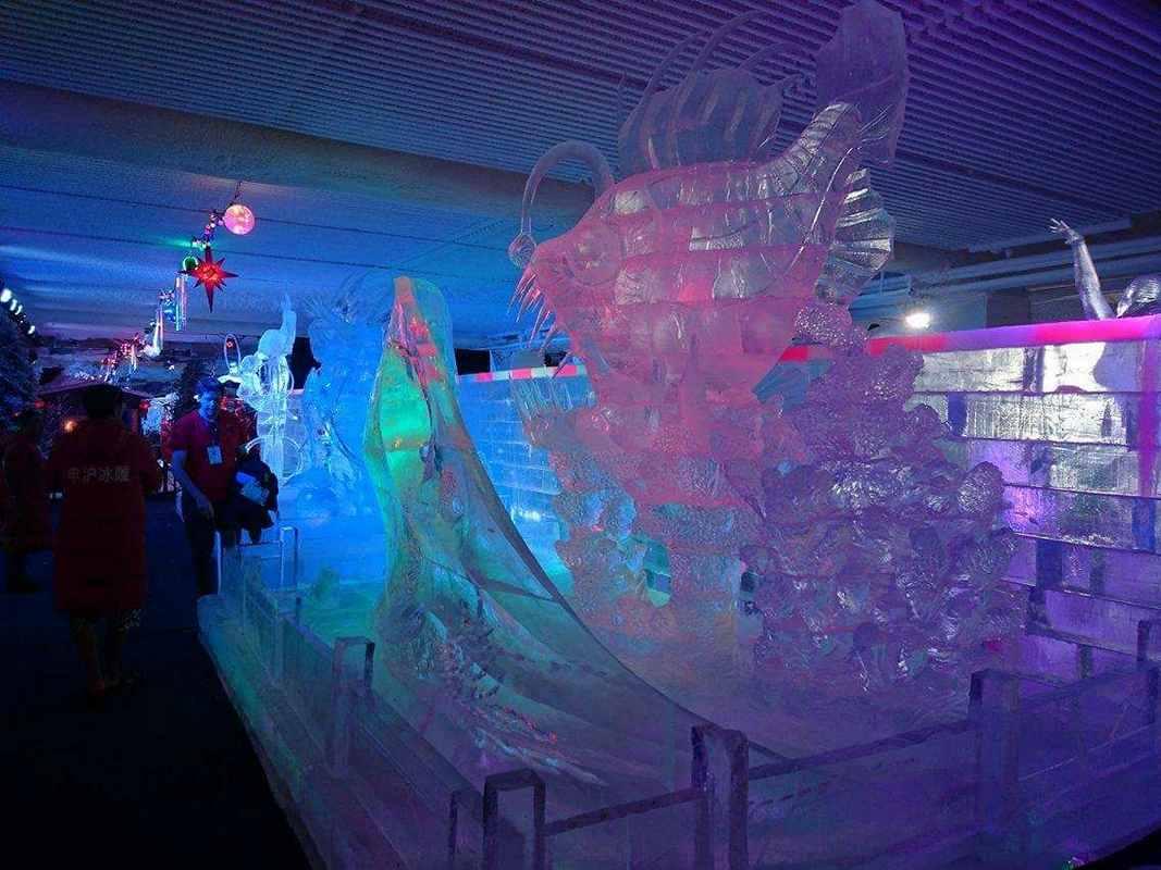 Ледовый конкурс в Китае (13)
