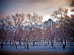 Хабаровск (42)