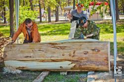 Фестиваль деревянной скульптуры (6)