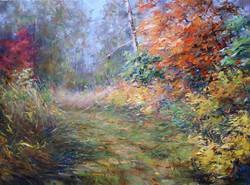 Осенняя, заросшая тропа х.м