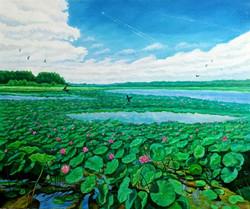 Озеро лотосов. Хабаровск. 50х60 х.,м.