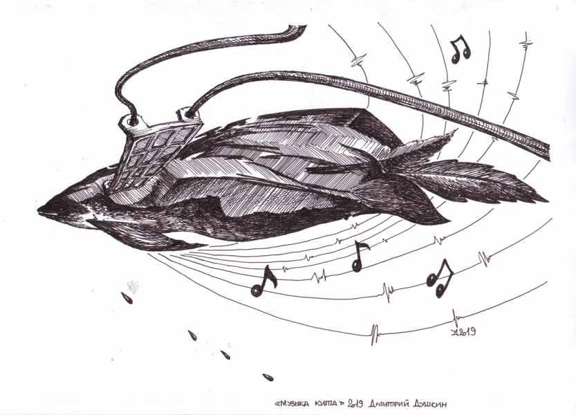Музыка кита 2019