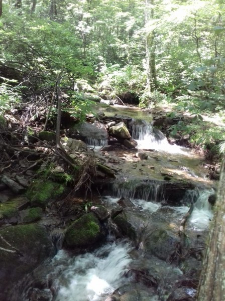 Шумящий ручей