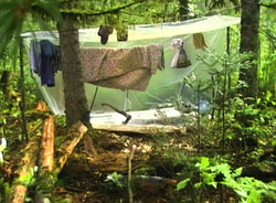 Мой табор в тайге