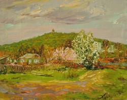 Весна в Шмаковке 40х30 х