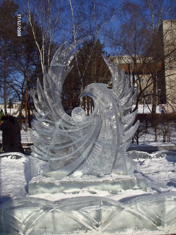 птица зима 2010 Хабаровск