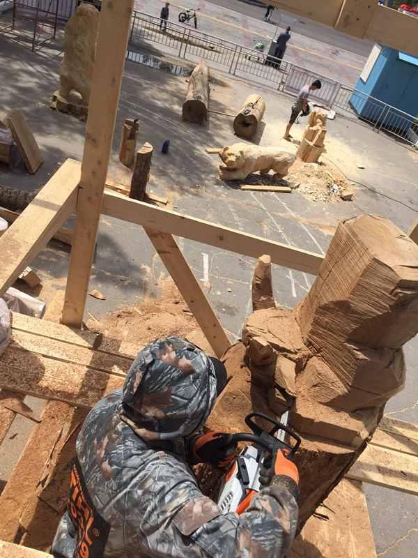 Фестиваль деревянной скульптуры (15)