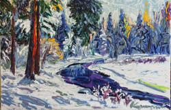 Теплая зима . холст. масло 60х90 2013