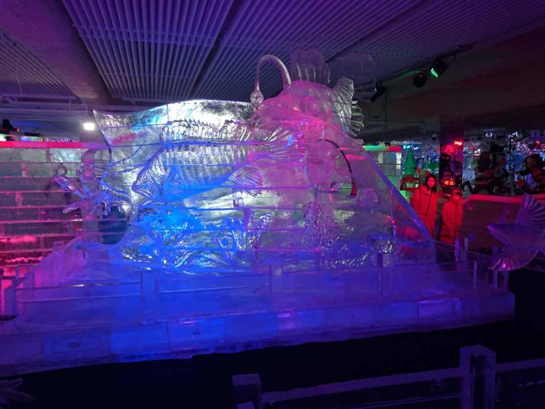 Ледовый конкурс в Китае (7)