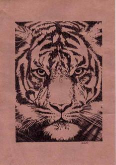 Амурский тигр 2019 23х17