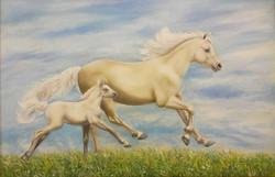 Лошадки хм 48х57 2019 г
