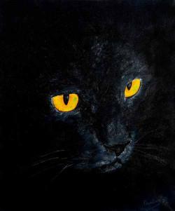 60х50, Вечерний кот, масло, 2016