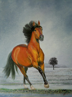 Рыжий конь 50х40 х