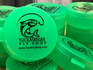 Go Green and Save Money on Flies