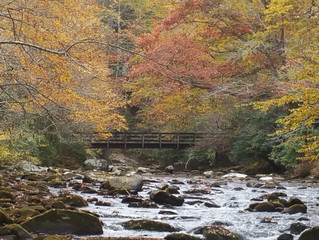 Cooler Weather Has Fall Trips Booking Fast