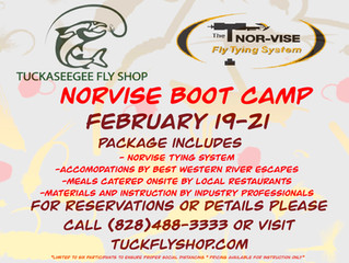 Norvise Boot Camp