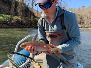Mid-Late March Fishing Report