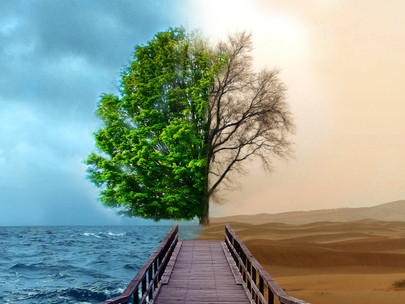 BEYOND SUSTAINABLE DEVELOPMENT: A TRICKY CONCEPT