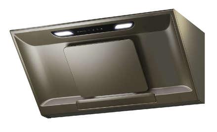 銀珍珠RS