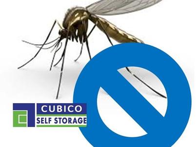 Fim dos insetos: mosquitos