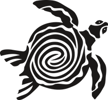 turtle-2633189-640_orig.png