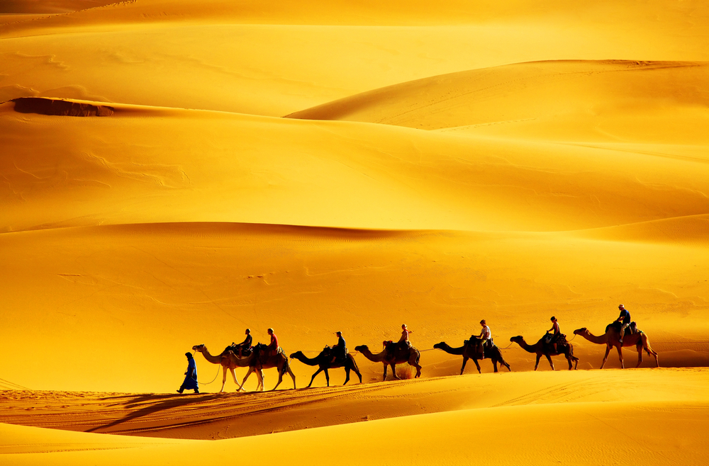 Desert caravan ABU DHABI Emirates