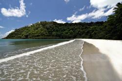 Cape Tribulation, Queensland,Au