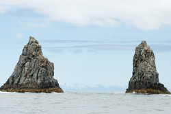 Bruny Island Cliffs,Tasmania,Australia