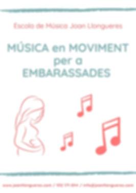 Musica embarassades2.jpg