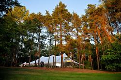 Medalist Tent nestled in woods