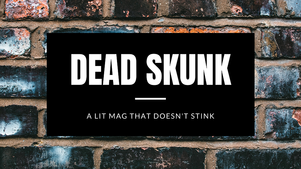 """Blog title""""DEAD SKUNK"""" """"A Lit Mag That Doesn't Stink"""" on a distressed brick wall"""