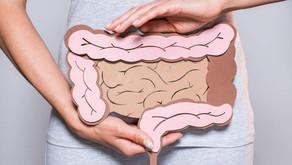 ¿Has escuchado hablar del tema microbiota intestinal?