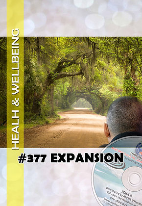 #377 THE EXPANSION OF YOUR PROCESS