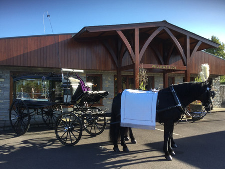 Horse & Carriage Hearse