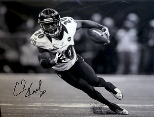 Ed Reed Signed Canvas.jpg