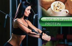 30-05 rice protein