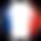 Circular_FR_flag_icon.png