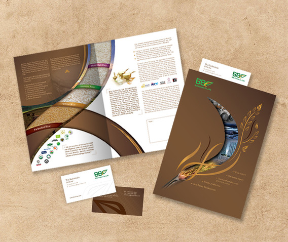 Rice Brochure Design Mekhala Stlying Bra