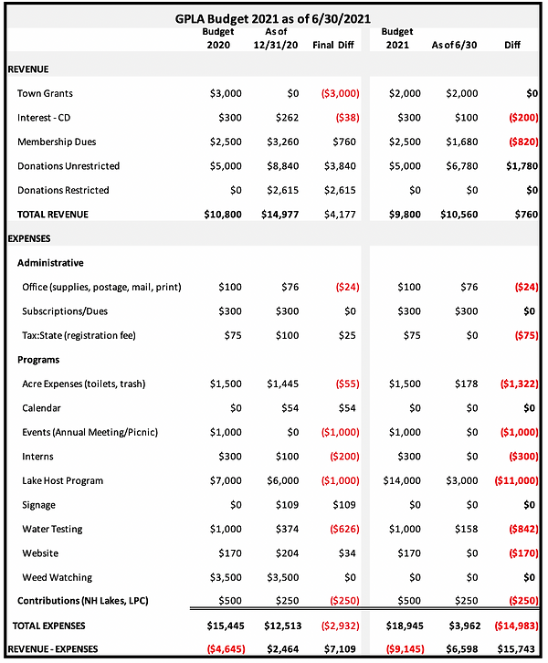 GPLA Budget 2021 as of 063021.png