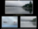 Screen Shot 2019-11-13 at 10.10.55 PM.pn