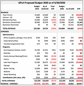 GPLA Budget 2020 as of 063020.png